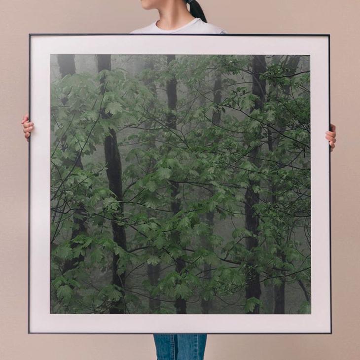 伊朗艺术家 迈赫兰·纳什班迪 作品《在其间》In between spaces