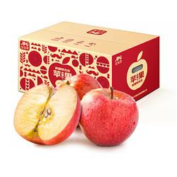 佳多果 新疆阿克苏苹果 果径80-85mm  16—20粒装 净重4kg  *2件