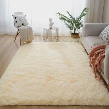 京东PLUS会员: 斯宝路  卧室客厅加厚长毛款地毯  70*200厘米 *2件