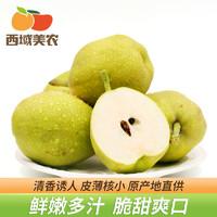 西域美农新疆库尔勒香梨4.5-5斤特产新鲜水果梨子整箱