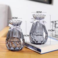 虔生缘(CHANSUNRUN)玻璃花瓶透明彩色欧式简约客厅摆件插