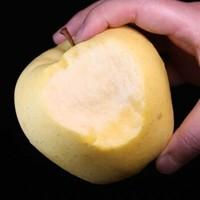 京东PLUS会员:山东烟台 金帅苹果 75-80mm 中果   2.5斤 *2件