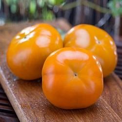 猕鲜人 现摘甜脆柿子 5斤中果