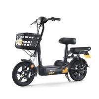 新日(Sunra)电动车新国标电动自行车48V成人电瓶车小型轻便男女通用代步车时尚滑板车 流云白