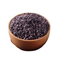 十月稻田 紫米 1kg