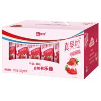 MENGNIU 蒙牛 真果粒 牛奶饮品 草莓果粒 250g*12盒 礼盒装
