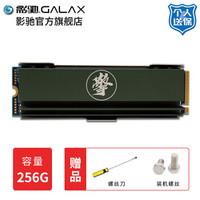 影驰 擎256G512G1TB M.2 SSD NVME