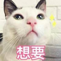 京东 双11宠物用品 预售狂欢