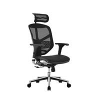保友Ergonor电脑椅 联友人体工学椅 金卓高配版Enjoy办公椅子 铝合金椅脚-黑网