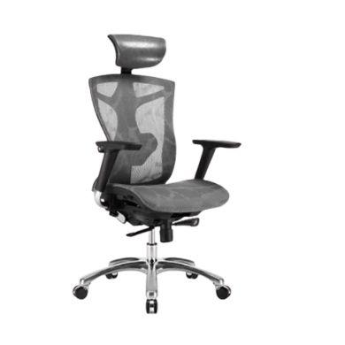 SIHOO 西昊 V1 人体工学座椅