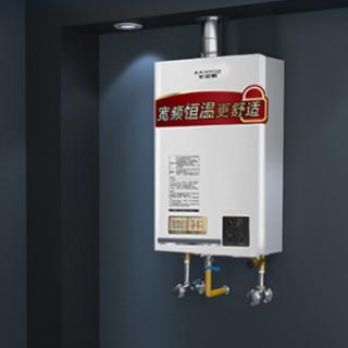 A.O.SMITH 史密斯 D1系列 JSQ33-D1 恒温强排式燃气热水器 天然气 16L