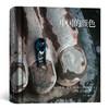 中国的颜色 法国布鲁诺巴贝马格南纪实摄影作品集改革开放40年历史影像集收藏画册书  后浪