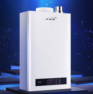 A.O.SMITH 史密斯 JSQ33-N3L 强排式燃气热水器 天然气 16L