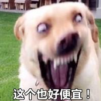 京东 ASICS旗舰店 双十一燃速跑出界!