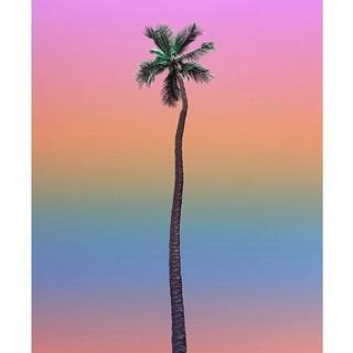 藝術品 : 夏威夷藝術家 Aryton Page艾瑞頓·佩吉 《氛圍 8號》