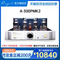 cayin A-300PMK2 凯音合并式功放斯巴克真空管胆机声频功率放大器