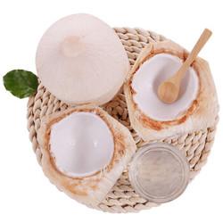 京觅  椰子 9个 大果 单果850g以上