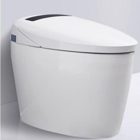 diiib 大白 DXD01002 净爽抗菌智能马桶一体机 不带脚感