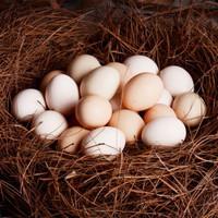品鲜夫人 新鲜土鸡蛋笨鸡蛋柴鸡蛋现捡新鲜谷物虫草鸡蛋盒装 30枚实惠装