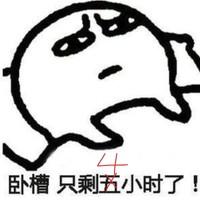 京东 海鸥手表旗舰店 11.11狂欢