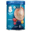 Gerber 嘉宝 婴儿缤纷水果营养米粉 2段 250g(6个月以上)