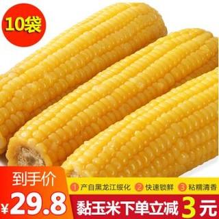 振豫 东北糯玉米棒黏玉米 10根