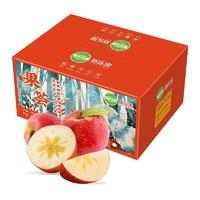 京觅 糖心阿克苏苹果 5kg*1件+羊脂梨 净重4.5斤 6-8个*2件+火龙果6kg