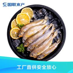 国联 东海国产小黄鱼1.2kg 24-32条 深海鱼类 产地直供 生鲜 海鲜水产 *3件