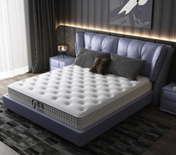 hommy 佳佰 佳佰乳胶床垫弹簧代椰棕棉席梦思床垫可定制定做 1.8米*2米