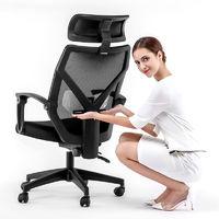 百亿补贴:LIANFENG 联丰 DS-203CG 电脑椅 黑色