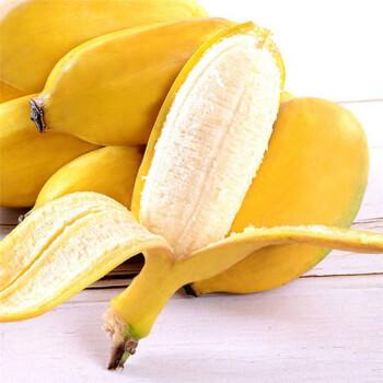 新鲜小米蕉小香蕉  9-9.5斤