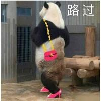 京东 鞋靴品类日 疯狂来袭