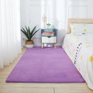 爱思顿 加厚客厅地毯 40*120厘米 *2件