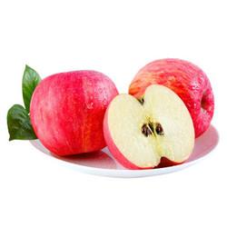 见果是果 陕西红富士苹果 80-85mm 18个装