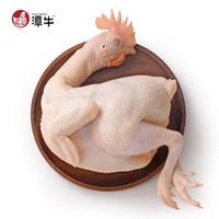 潭牛 文昌鸡 母鸡 净重1.8斤 *2件