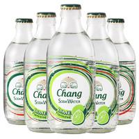 Chang 象牌 苏打水 无糖0脂0卡 325ml*24瓶