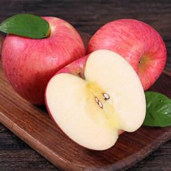 家总管 洛川红富士苹果 60mm-75mm 5斤