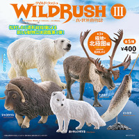 Kaiyodo海洋堂日版盒蛋 新世界动物杂志3 极地地区 北极熊 现货