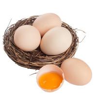 京东PLUS会员: 静益乐源 农家新鲜鸡蛋 10枚装 *4件
