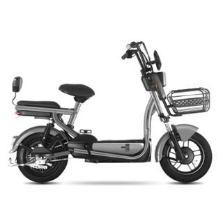 Luyuan 绿源 48V20Ah 圣甲虫 电动自行车