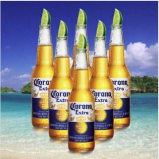 Corona 科罗娜 特级 啤酒 330ml*6瓶