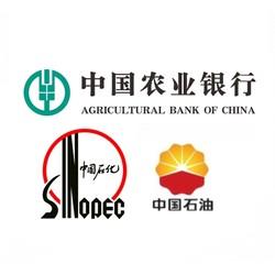 农业银行 X 中石油 / 中石化 云闪付支付优惠