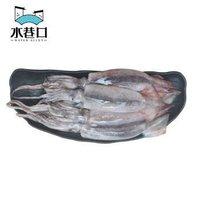 限地区:水巷口 冷冻南海鱿鱼 500g *14件