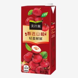 Minute Maid 美汁源 粗粮王山楂复合果汁 1L*10 *2件