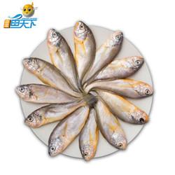中洋鱼天下  舟山小黄鱼 8-12条  500g  *24件