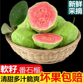 京东PLUS会员:广西番石榴红心芭乐白心应季新鲜水果1斤  (拍5份一起发) 红肉芭乐 *5件