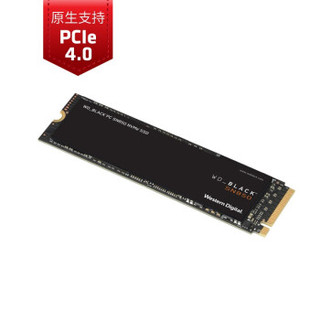 Western Digital 西部数据 WDS500G1X0E 500GB SSD固态硬盘