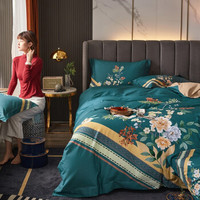 移动专享:Xanlenss 轩蓝仕 100支匹马棉纯净暖绒四件套 1.8m
