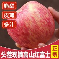 2020年头茬新果陕西高山红富士脆甜冰糖心5斤装