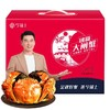今锦上 鲜活大闸蟹现货  公2.7-3.0两 母1.8-2.0两 4对8只